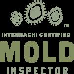 Mold Inspection Hammond